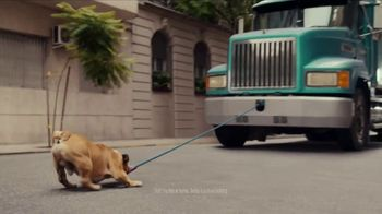 Iams TV Spot, 'Teddy' - Thumbnail 4