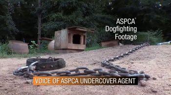 ASPCA Spring Member Drive TV Spot, 'Dog Fighting Cruelty' - Thumbnail 2