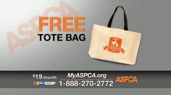 ASPCA Spring Member Drive TV Spot, 'Dog Fighting Cruelty' - Thumbnail 7