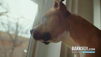 BarkBox TV Spot, 'Mailman' - Thumbnail 2