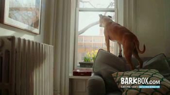 BarkBox TV Spot, 'Mailman'