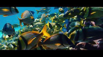 Atlantis TV Spot, 'Endless Flow: Summer Rates in May' - Thumbnail 5
