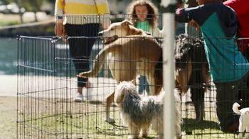 Coldwell Banker TV Spot, 'Old Dog, New Dog' - Thumbnail 4