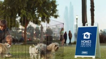 Coldwell Banker TV Spot, 'Old Dog, New Dog' - Thumbnail 8