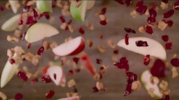 Wendy's Harvest Chicken Salad TV Spot, 'Fall Flavors' - Thumbnail 6
