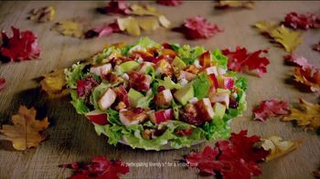 Wendy's Harvest Chicken Salad TV Spot, 'Fall Flavors'