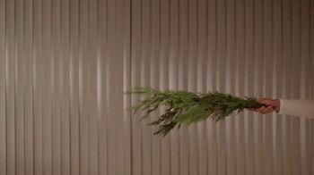 Schmidt's Natural Deodorant Cedarwood+Juniper TV Spot, 'Yawn' - Thumbnail 6