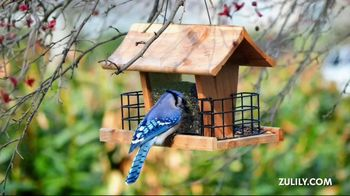 Special Gifts: Bird Feeder thumbnail