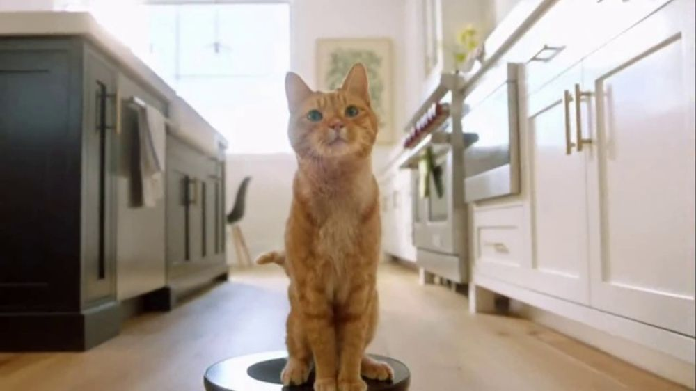b0d0c9d4460a Fresh Step Clean Paws TV Commercial, 'Cat Toy' - iSpot.tv