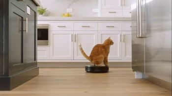 Fresh Step Clean Paws TV Spot, 'Cat Toy' - Thumbnail 2