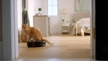 Fresh Step Clean Paws TV Spot, 'Cat Toy' - Thumbnail 5