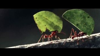 2018 GMC Terrain TV Spot, 'The Strength of an Ant' [T2] - Thumbnail 3