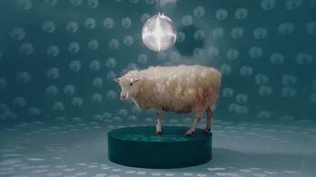 Bombas Merino Wool TV Spot, 'Fluffy Sheep' - Thumbnail 10