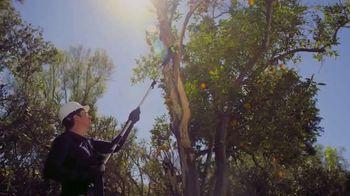 GreenWorks Pro 60V 10-Inch 9-Foot Pole Saw TV Spot, 'Ever-Evolving'