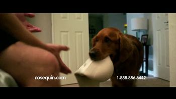 Cosequin TV Spot, 'Joint Health Support for Veteran Service Dog' - Thumbnail 2