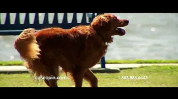 Cosequin TV Spot, 'Joint Health Support for Veteran Service Dog' - Thumbnail 7
