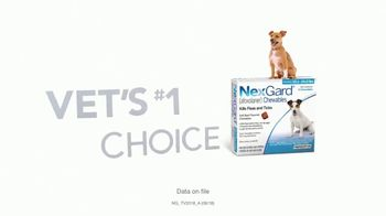 NexGard Chewables for Dogs TV Spot, 'Puppy Happiness' - Thumbnail 10
