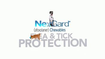 NexGard Chewables for Dogs TV Spot, 'Puppy Happiness' - Thumbnail 4