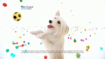 NexGard Chewables for Dogs TV Spot, 'Puppy Happiness' - Thumbnail 5