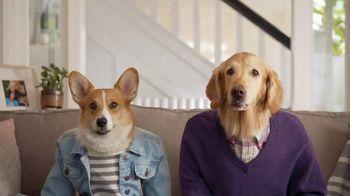 Resolve Pet Expert TV Spot, 'Max and Cooper'