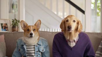Resolve Pet Expert TV Spot, 'Max and Cooper' - Thumbnail 1