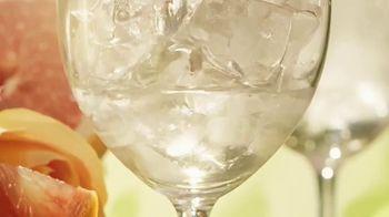 Ketel One Botanical TV Spot, 'Refreshing' - Thumbnail 3