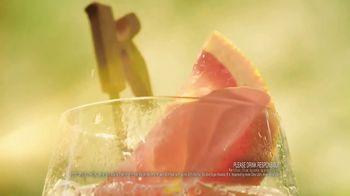 Ketel One Botanical TV Spot, 'Refreshing' - Thumbnail 7