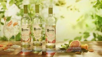 Ketel One Botanical TV Spot, 'Refreshing' - Thumbnail 8