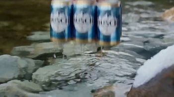 Busch Beer TV Spot, 'Bear: Cold Activated Cans' - Thumbnail 2