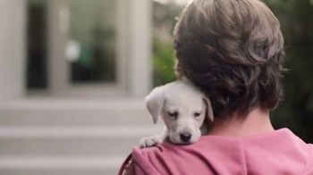 PetSmart TV Spot, 'Pets Are a Journey' - Thumbnail 3