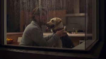 PetSmart TV Spot, 'Pets Are a Journey' - Thumbnail 6