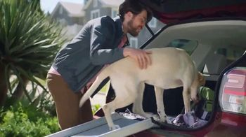 PetSmart TV Spot, 'Pets Are a Journey' - Thumbnail 7