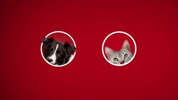 Purina ONE TV Spot, '28 Days. ONE Visibly Healthy Pet' - Thumbnail 1