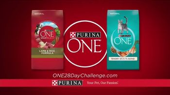 Purina ONE TV Spot, '28 Days. ONE Visibly Healthy Pet' - Thumbnail 7