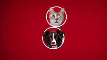 Purina ONE TV Spot, '28 Days. ONE Visibly Healthy Pet' - Thumbnail 2