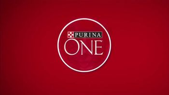 Purina ONE TV Spot, '28 Days. ONE Visibly Healthy Pet'
