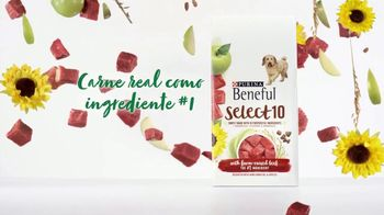 Purina Beneful Select 10 TV Spot, 'Selectivo' [Spanish] - Thumbnail 4