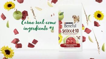 Purina Beneful Select 10 TV Spot, 'Selectivo' [Spanish] - Thumbnail 5