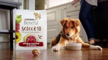 Purina Beneful Select 10 TV Spot, 'Selectivo' [Spanish] - Thumbnail 6
