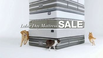 Macy's Labor Day Mattress Sale TV Spot, 'Dogs' - Thumbnail 2