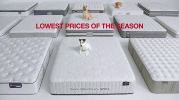 Macy's Labor Day Mattress Sale TV Spot, 'Dogs' - Thumbnail 3