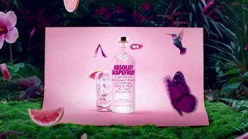 Absolut Grapefruit TV Spot, 'Sweet Attraction'