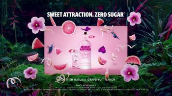 Absolut Grapefruit TV Spot, 'Sweet Attraction' - Thumbnail 4