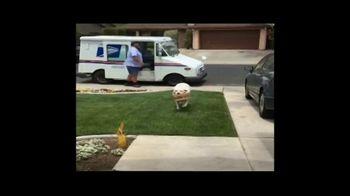BarkBox TV Spot, 'New Toy: Free Shipping' - Thumbnail 1