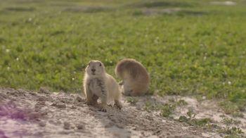 South Dakota Department of Tourism TV Spot, 'Badlands National Park'