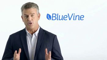 BlueVine Capital TV Spot, 'Flexible Credit Lines' - Thumbnail 4