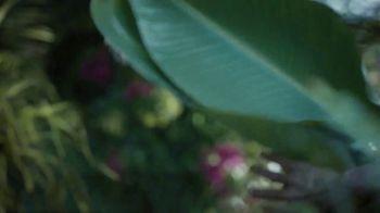 Cheetos TV Spot, 'Chameleon' - Thumbnail 8