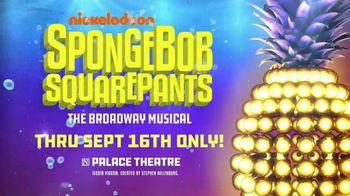 SpongeBob SquarePants the Musical TV Spot, 'Winner of Best Musical' - Thumbnail 8
