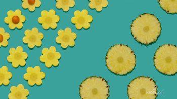 Edible Arrangements FruitFlowers Bouquet TV Spot, 'Birthday-ible' - Thumbnail 4