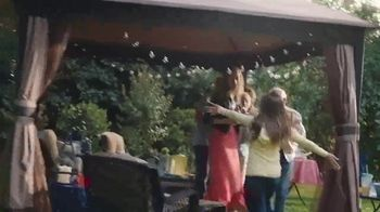 Big Lots Friends & Family Event TV Spot, 'Today Only' - Thumbnail 5
